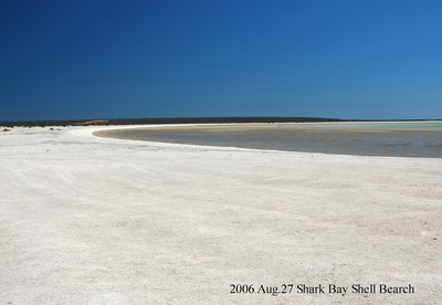 2006aug27_shark_bay_shell_bearch063