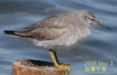 2006may3