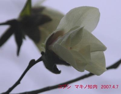 S2007apr717