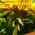 S642004mar28_005
