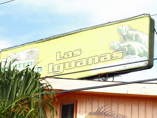 S2008des27_santarosa_lasiguanas38