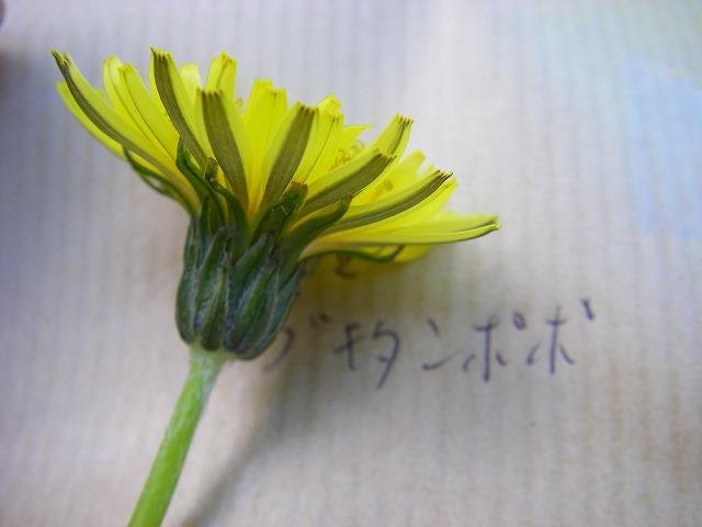 20100530_data09