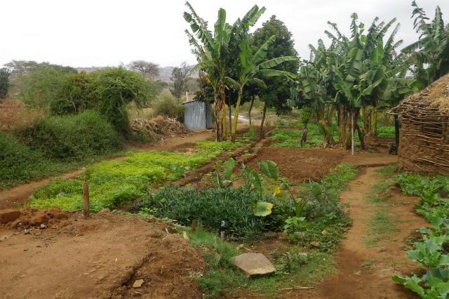2011jul26_kenya_nairobi_namanga290