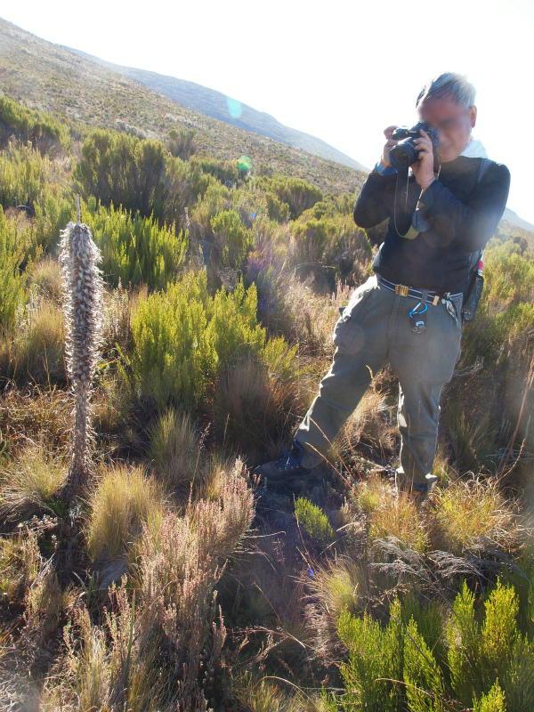 2011jul31_descent_to_mandara_hut1_2