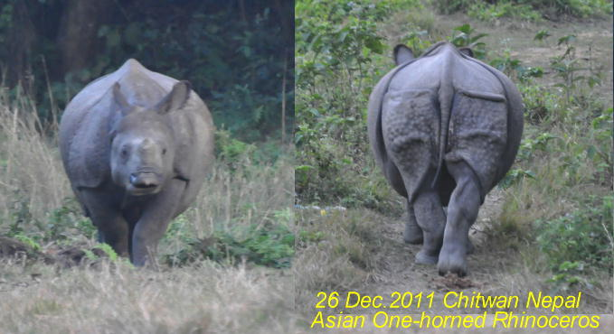 2011dec26_nepal
