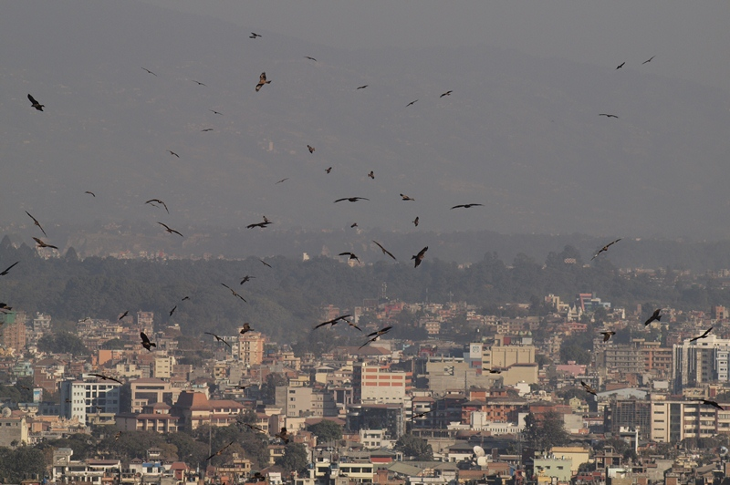 2011dec30_kathmandu_swayambhunoth16