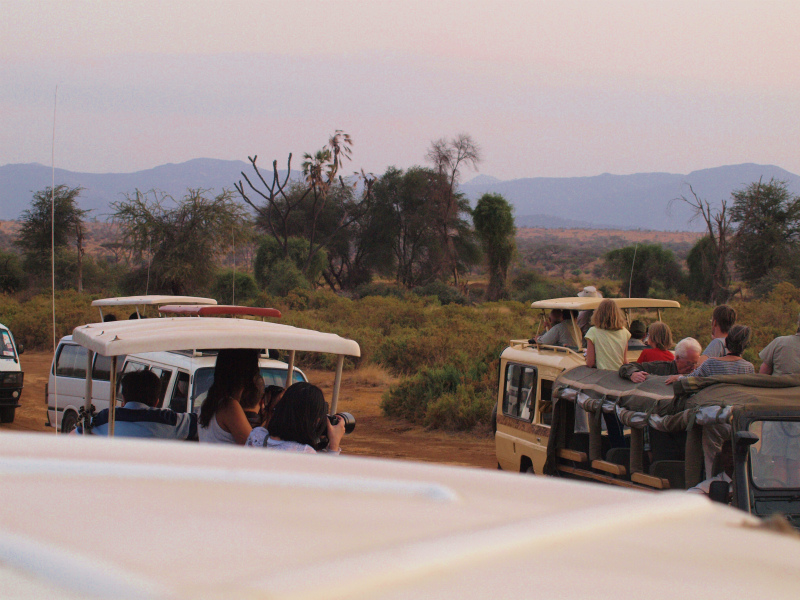 2012july27_samburu_evening_drive__6